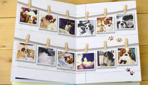 もうすぐ「写真の日!」ということで・・ ご一緒にフォトブック作りませんか?